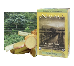 Decaf Ginger Sun (Classic Packaging) [numis-10260c.png]