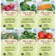 Savory Tea Variety Bundle [numis-tvbsavory.jpg] - Click for More Information