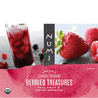 This is the picture of Berried Treasures™ under the category NumiTeaStore@Teaware@FoodService@IcedTea in Numi Organic Tea. Click to add to cart.
