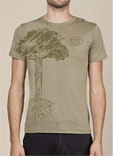 This is the picture of Pu·erh Tree T-Shirt (Green) under the category NumiTeaStore@Teaware@Merchandise in Numi Organic Tea. Click to add to cart.